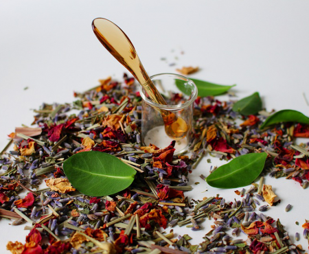 Homöopathie – die Kraft der Natur